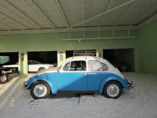 Used 1966 VOLKSWAGEN BEETLE  | Miami, FL