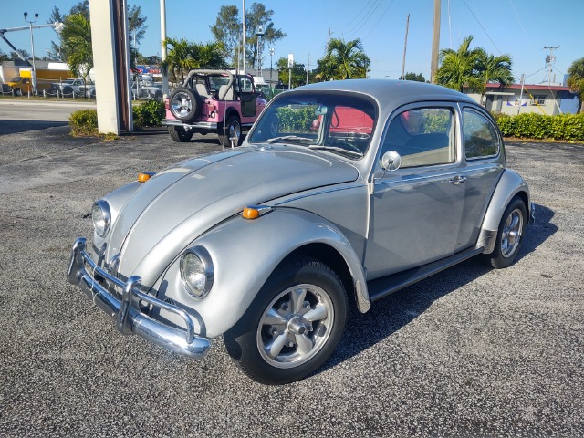 Used 1967 VOLKSWAGEN Beetle  | Miami, FL